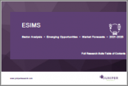 eSIMs: Sector Analysis, Emerging Opportunities & Market Forecasts 2021-2025