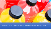 Global Electrolyte Mixes Market, By Product (RTD Beverages, Electrolyte Powders, Tablets, Pills & Capsules, Others); By Sales Channel (Store-Based and Non-Store-Based); By Region (North America, Europe, the Asia-Pacific, Rest of World)