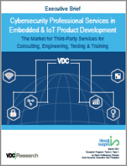 Cybersecurity Professional Services in Embedded & IoT Product Development: The Market for Third-Party Services for Consulting, Engineering, Testing & Training