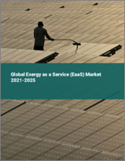Global Energy as a Service (EaaS) Market 2021-2025