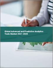 Global Advanced and Predictive Analytics Tools Market 2021-2025