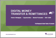 Digital Money Transfer & Remittances: Vendor Strategies, Opportunities and Market Forecasts 2021-2025