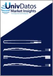 Radar Based In-Cabin Sensing Systems Market: Current Analysis and Forecast (2021-2027)