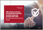 SMB Network Security and Security Appliance Spending Worldwide: Trends and Forecasts 2020-2025