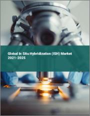 Global In Situ Hybridization (ISH) Market 2021-2025