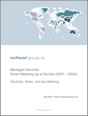 Managed Services: Smart Metering-as-a-Service (2021 - 2030)