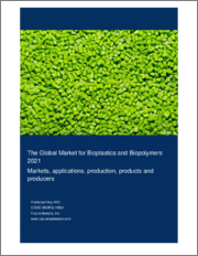 The Global Market for Bioplastics and Biopolymers 2021