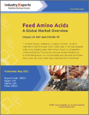 Feed Amino Acids - A Global Market Overview