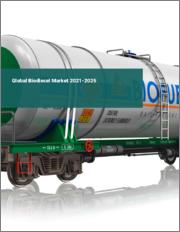 Global Biodiesel Market 2021-2025