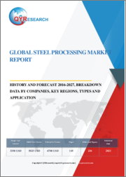 Global Steel Processing Market Report, History and Forecast 2016-2027