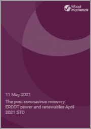 The Post-Coronavirus Recovery: ERCOT Power and Renewables April 2021 STO