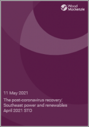 The Post-Coronavirus Recovery: Southeast Power and Renewables April 2021 STO