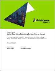 Market Data - Utility-Scale Long Duration Energy Storage - Flow, Molten Salt, Lithium Ion, and Other Advanced Batteries, Compressed Air Energy Storage, Pumped Hydro Storage, and Power-to-Gas: Global Market Analysis and Forecasts