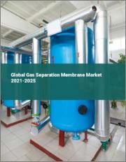 Global Gas Separation Membrane Market 2021-2025