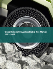 Global Automotive Airless Radial Tire Market 2021-2025