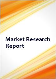 Natural Flavor Carrier: Global Market Intelligence (2020-2030)