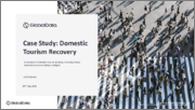 Domestic Tourism Recovery - Case Study