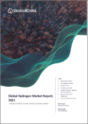 Global Hydrogen (Energy) Market Report, 2021 - Market Outlook, Trends, and Key Country Analysis