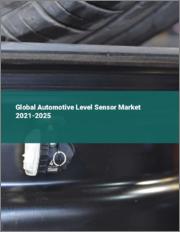 Global Automotive Level Sensor Market 2021-2025