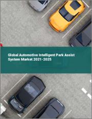Global Automotive Intelligent Park Assist System Market 2021-2025