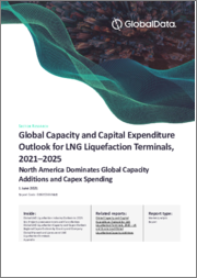 Global Capacity and Capital Expenditure Outlook for LNG Liquefaction Terminals to 2025 - North America Dominates Global Capacity Additions and Capex Spending