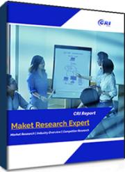 Investigation Report on China's Levofloxacin Market 2021-2025