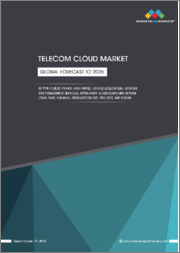 Telecom Cloud Market by Type (Public, Private, and Hybrid), Service (Colocation, Network, and Management Services), Application, Cloud Computing Service (SaaS, PaaS, and IaaS), Organization Size, End User, and Region - Global Forecast to 2026