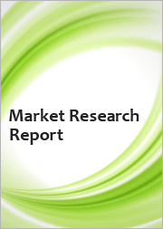 Global Hospital Capacity Management Solutions Market Size study, by Product Type, Component and Regional Forecasts 2021-2027