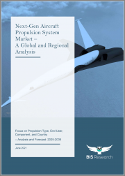 Next-Gen Aircraft Propulsion System Market - A Global and Regional Analysis: Focus on Propulsion Type, End User, Component, and Country - Analysis and Forecast, 2025-2035