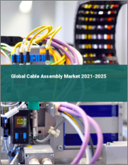 Global Cable Assembly Market 2021-2025