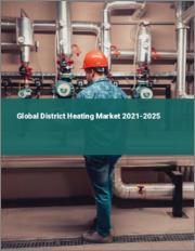 Global District Heating Market 2021-2025