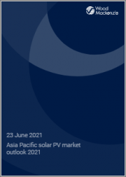 Asia Pacific Solar PV Market Outlook 2021