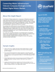 Connecting Water Infrastructure: Telecom Company Strategies in the Global Digital Water Market