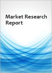 Global Big Data Market 2021-2025