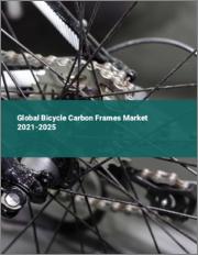 Global Bicycle Carbon Frames Market 2021-2025