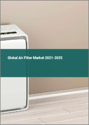 Global Air Filter Market 2021-2025