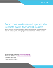 Tomorrow's Carrier-neutral Operators to Integrate Tower, Fiber and Data Center Assets: A New Breed of Integrated Owners of Infrastructure Network Assets Will Emerge Over the Next 2-3 Years, Converging Towers, Data Centers, and Fiber Networks