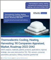 Thermoelectric Cooling, Heating, Harvesting: 90 Companies Appraised, Market, Roadmap 2022-2042