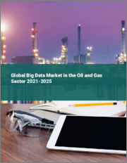 Global Big Data Market in the Oil and Gas Sector 2021-2025
