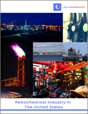 Petrochemical Industry in the United States - Forecast and Analysis 2021