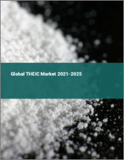 Global THEIC Market 2021-2025