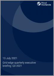 Grid Edge Quarterly Executive Briefing: Q3 2021