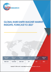 Global Rare Earth Magnet Market Insights, Forecast to 2027