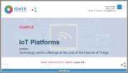 IoT Platforms: Technology-centric Offerings at the Core of the Internet of Things