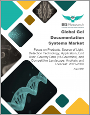 Global Gel Documentation Systems Market: Focus on Products, Source of Light, Detection Technology, Application, End User, Country Data (16 Countries), and Competitive Landscape - Analysis and Forecast, 2021-2030