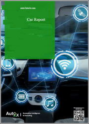 Automotive Cyber Security 2025: the Secure Connected Car