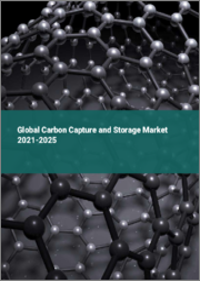 Global Carbon Capture and Storage Market 2021-2025
