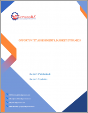 EBV Associated Burkitt Lymphoma - Current & Forecasted Market Opportunities, Epidemiological Studies, Market Dynamics, Pipeline Analytics and r-NPV Analysis