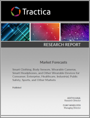 AI Processors for Cloud and Data Center Forecast Report - 2021 Analysis & Data