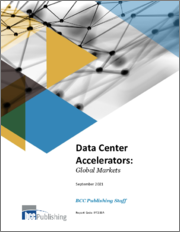 Data Center Accelerators: Global Markets
